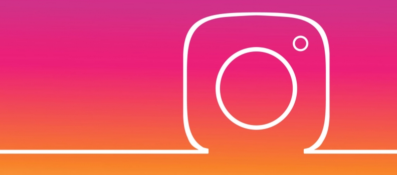 Have You Followed us on Instagram?
